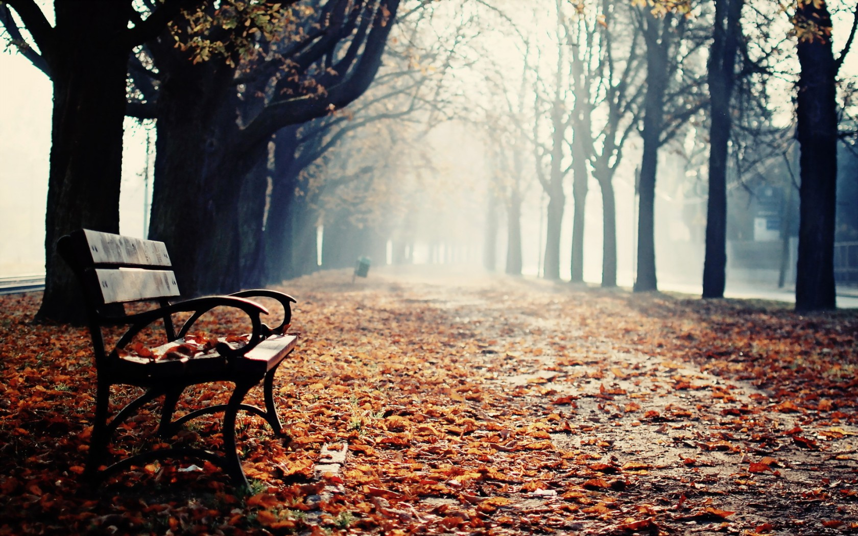 Lovely Bench Wallpaper