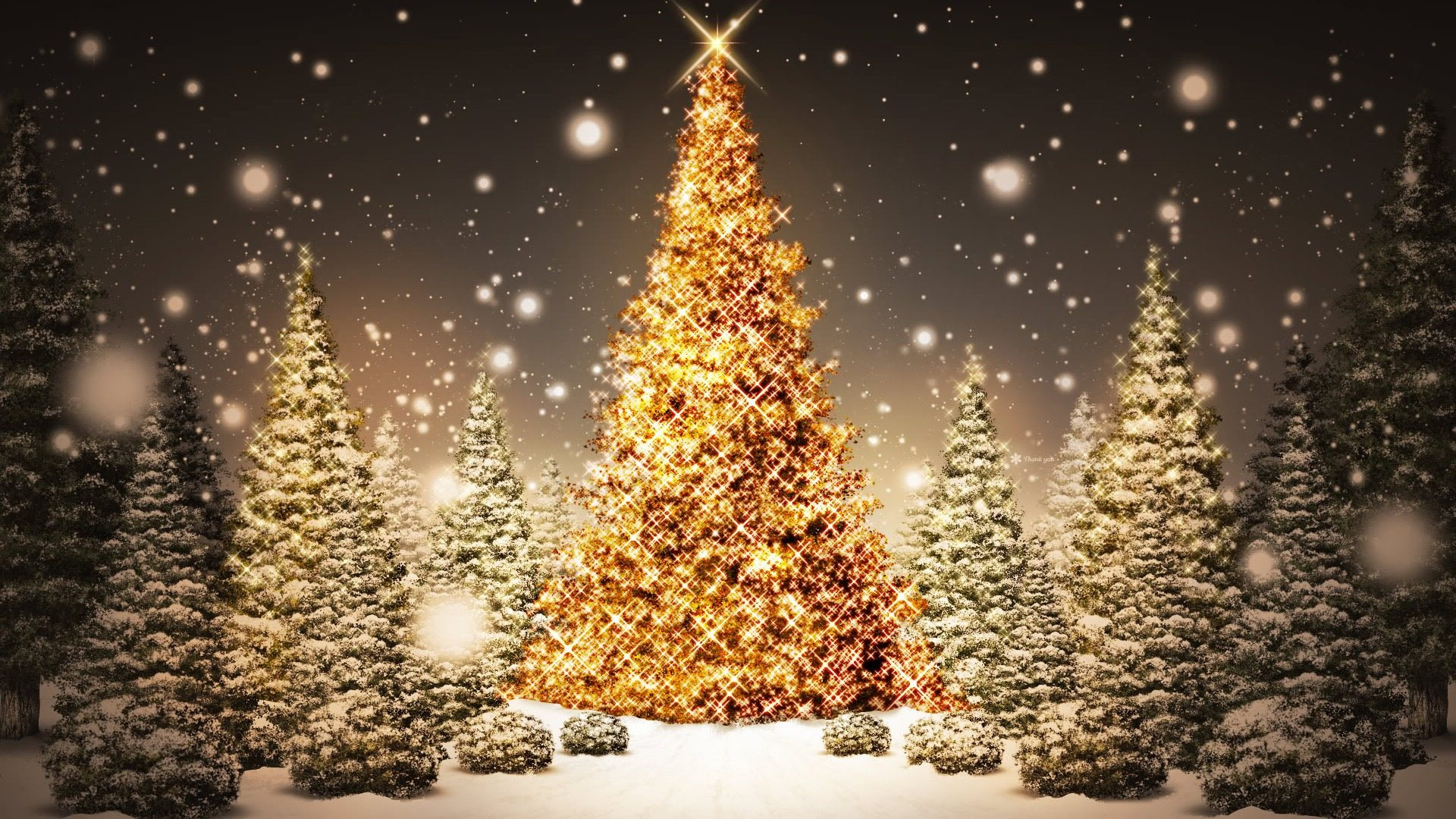 lovely christmas tree wallpaper 1920x1080 26525