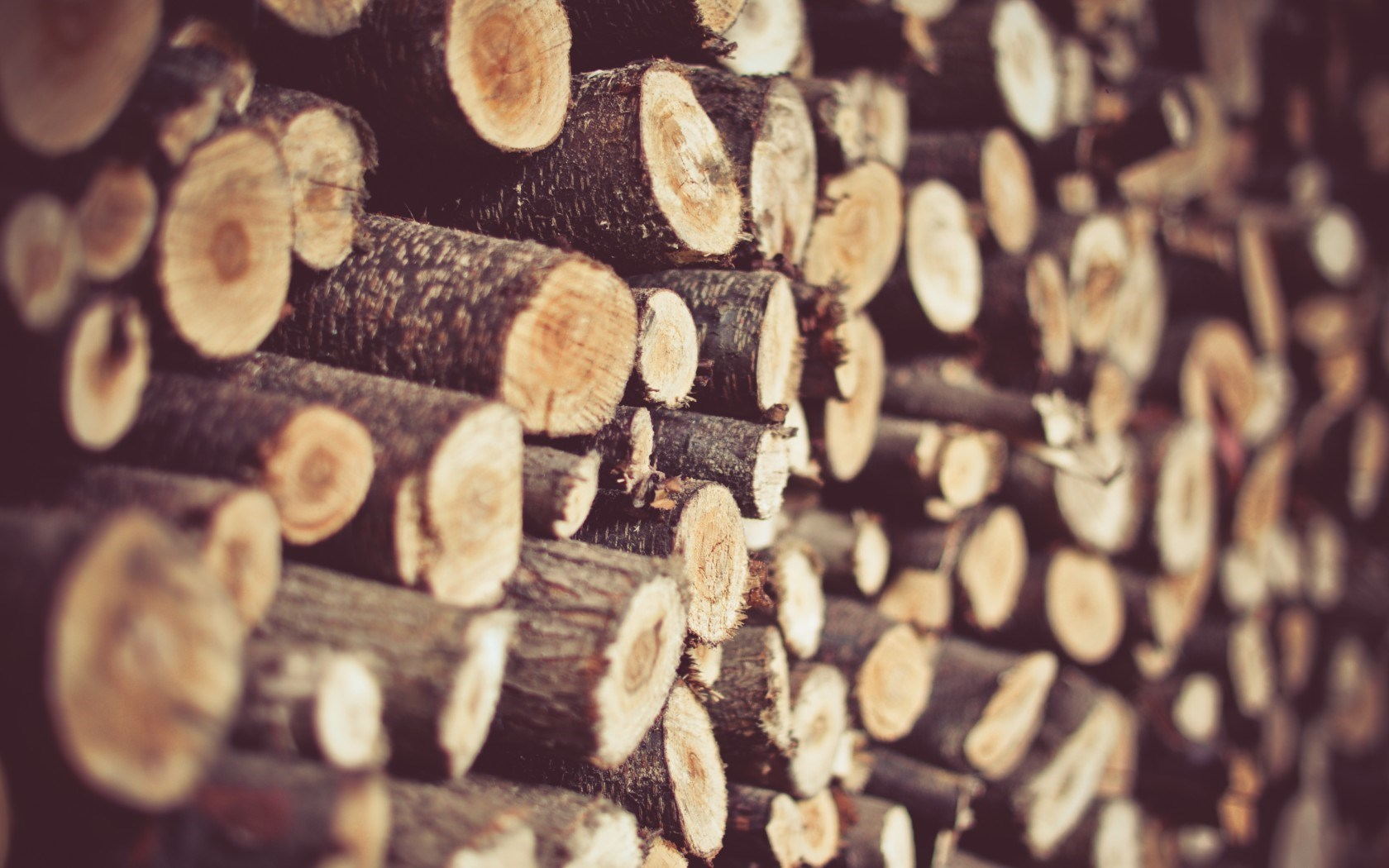 Lovely Firewood Wallpaper