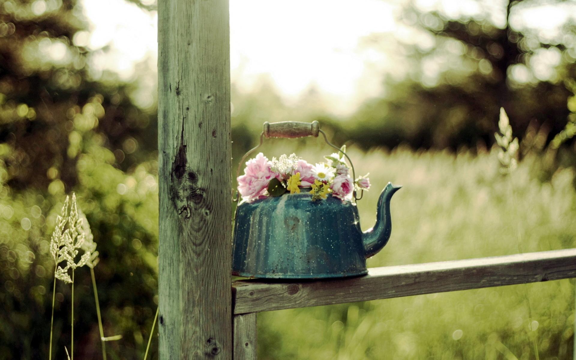 Lovely Flower Pot Wallpaper