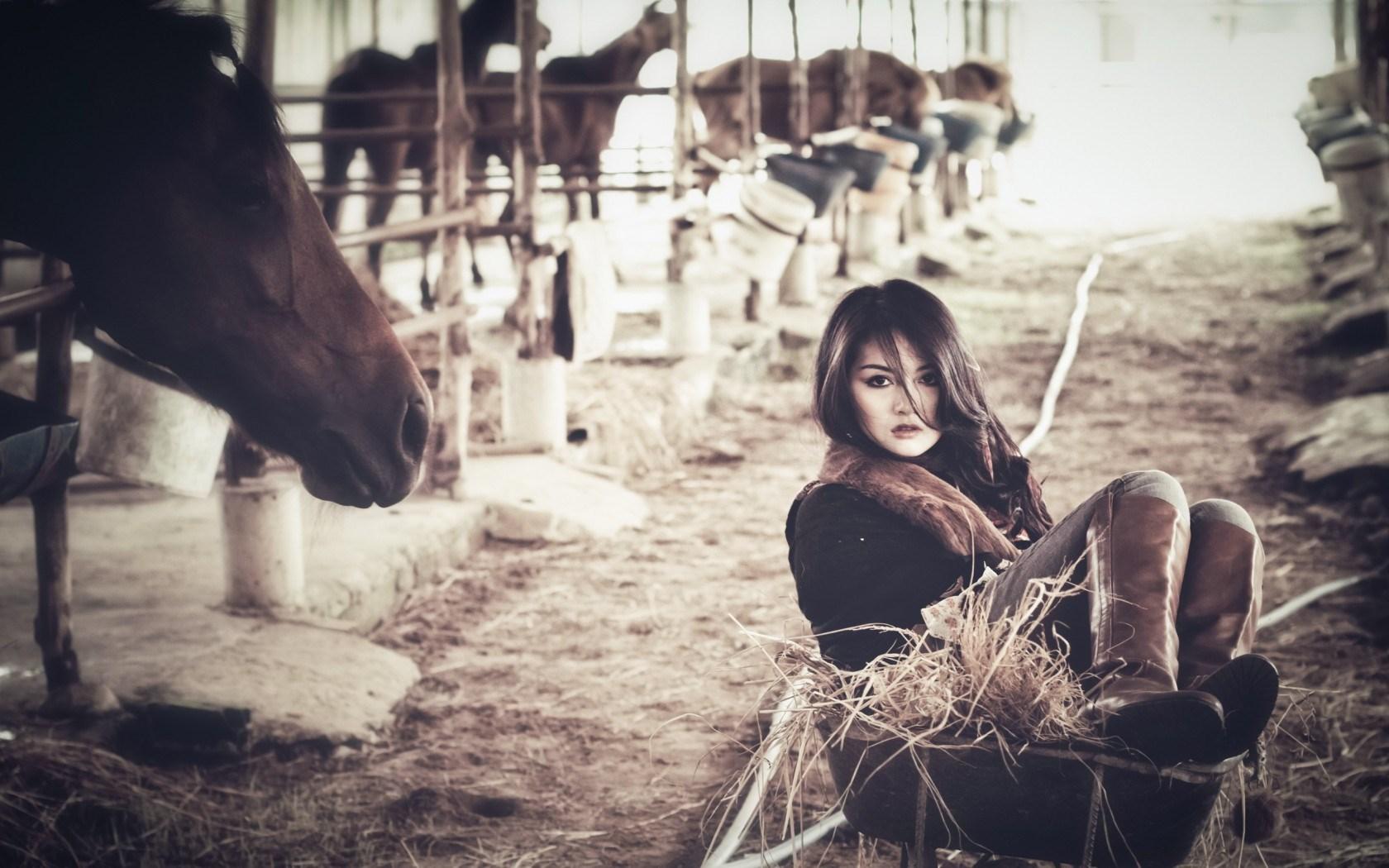 Lovely Girl Horses