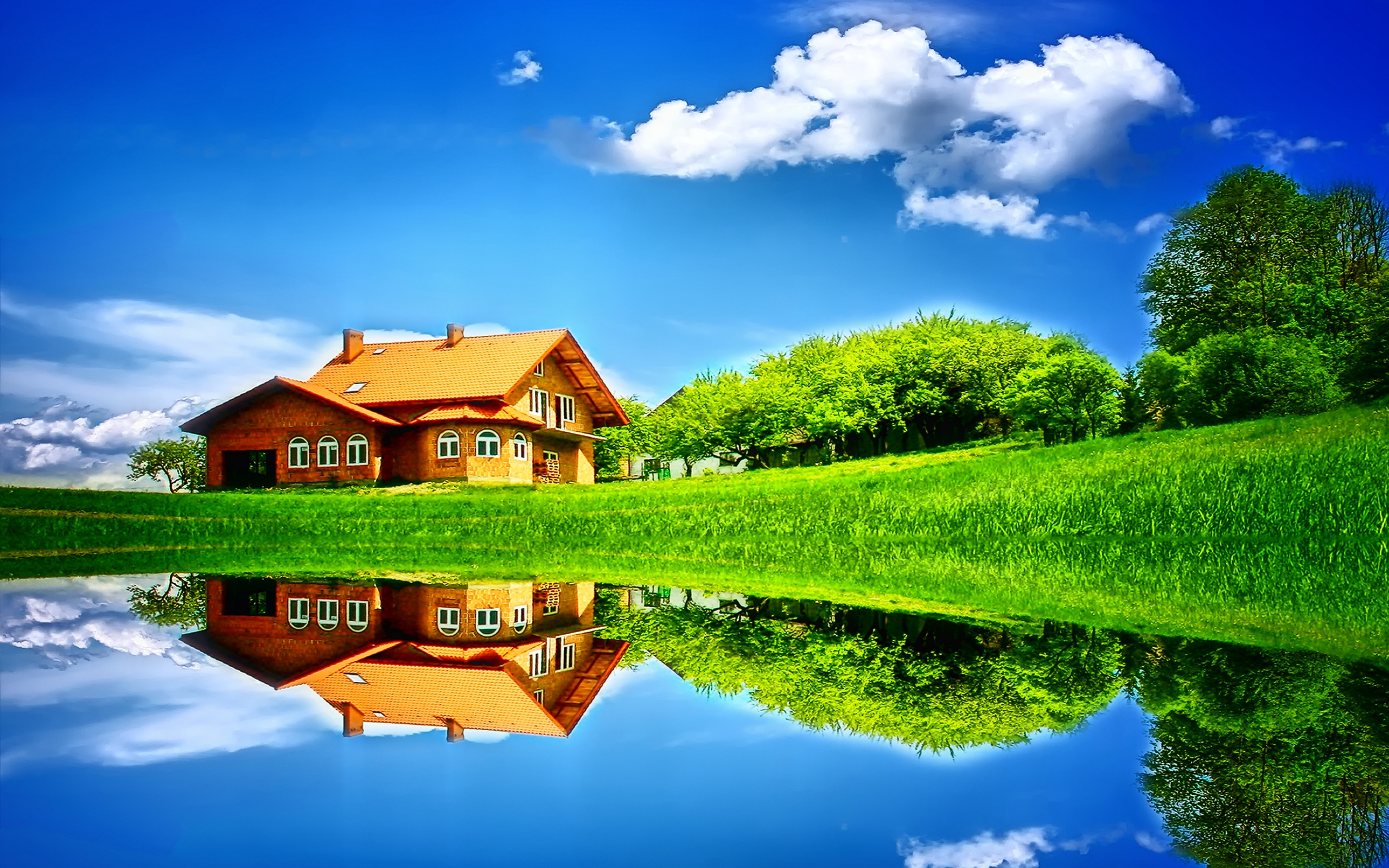 Lovely Nature Background