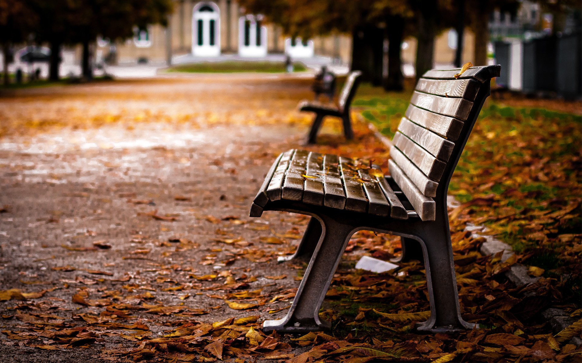 Lovely Park Bench Wallpaper