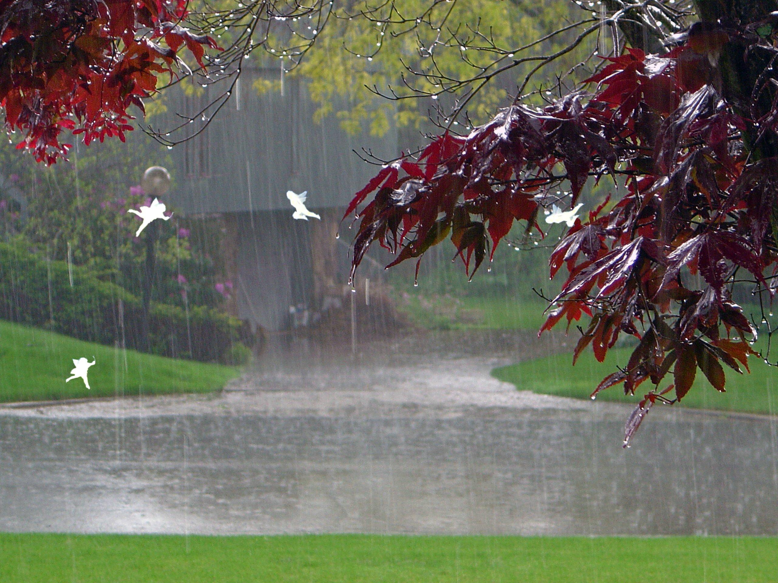 Lovely Rainy Day Wallpaper