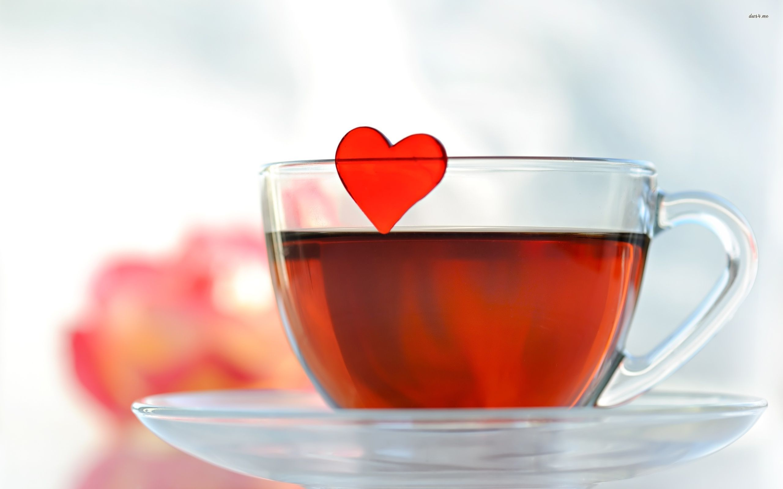 Lovely Tea Cup Wallpaper 42215 2560x1440 px
