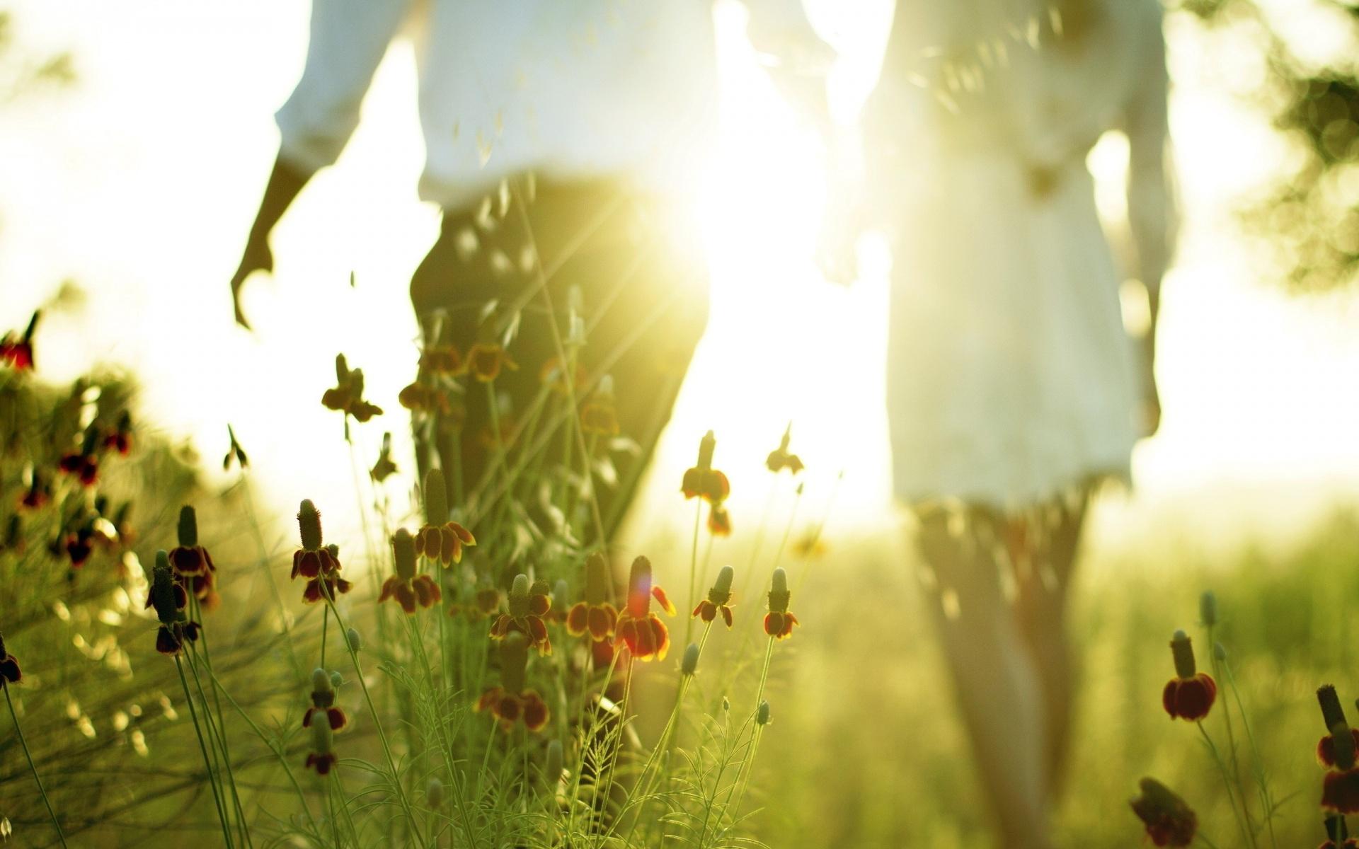 Lovers sunlight