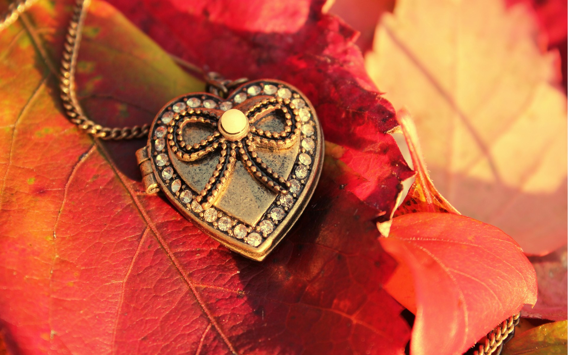 Macro Leaves Pendant Heart Autumn