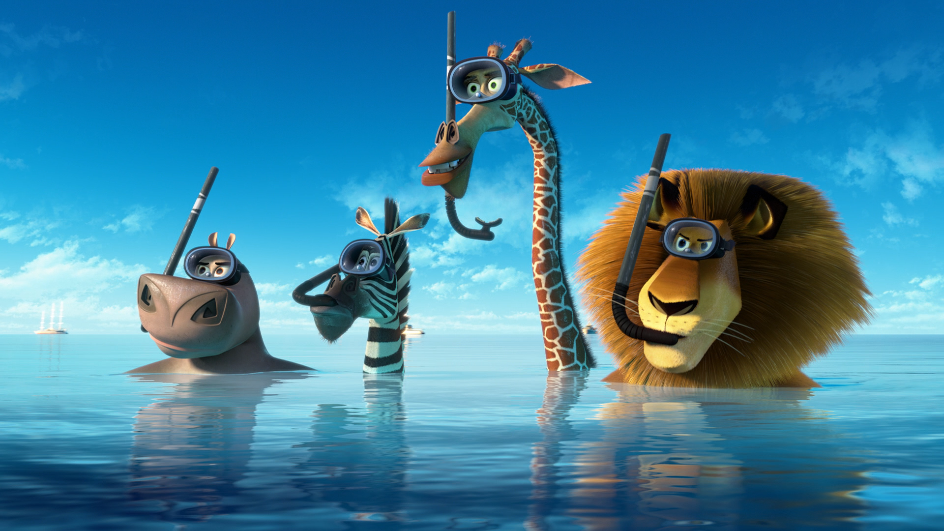 Madagascar wallpaper 1920x1080 48445 - Madagascar wallpaper ...