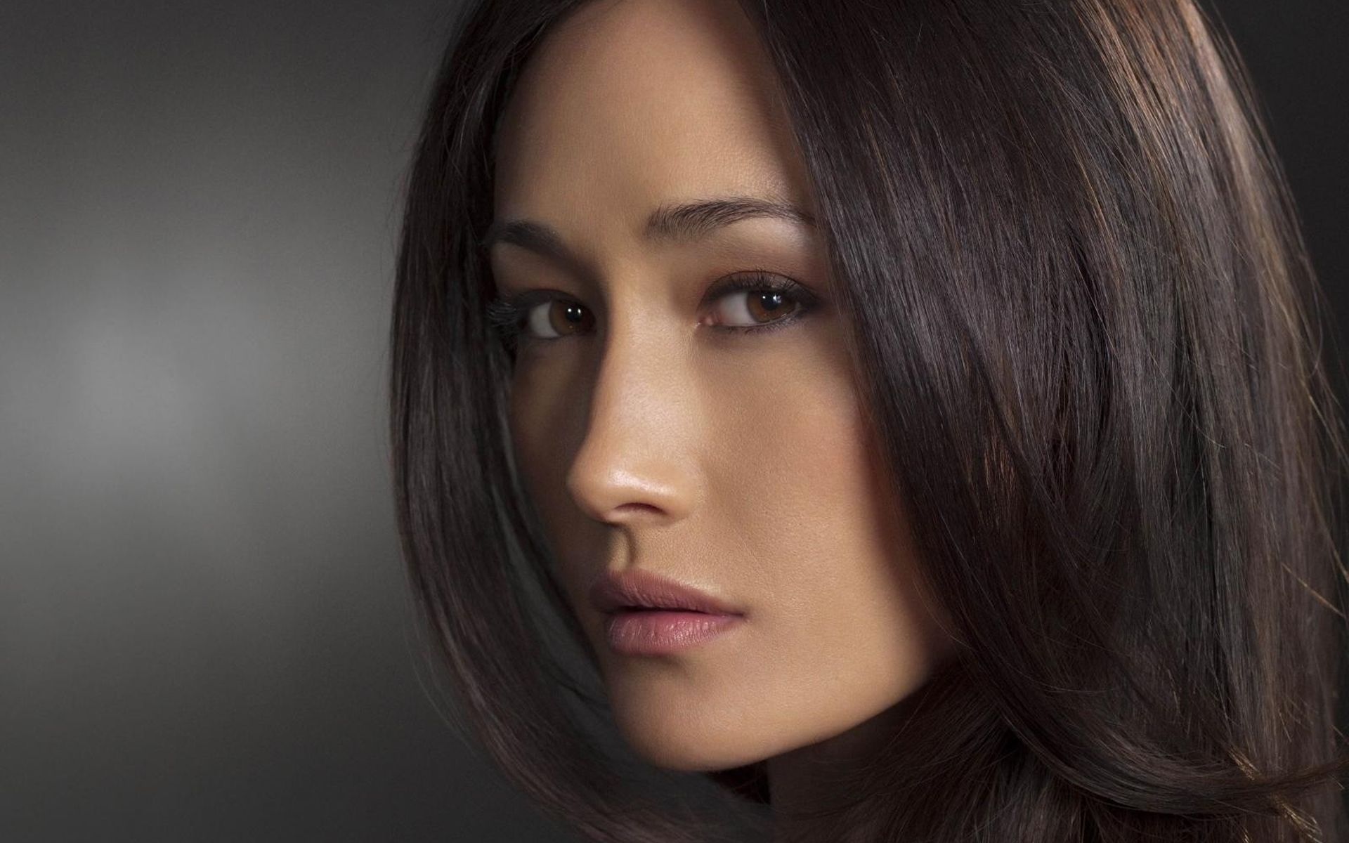 Maggie Q., star of the TV series Nikita, and Mililani High graduate, has made an appeal on behalf of less fortunate animals set to be killed Christmas Eve ...
