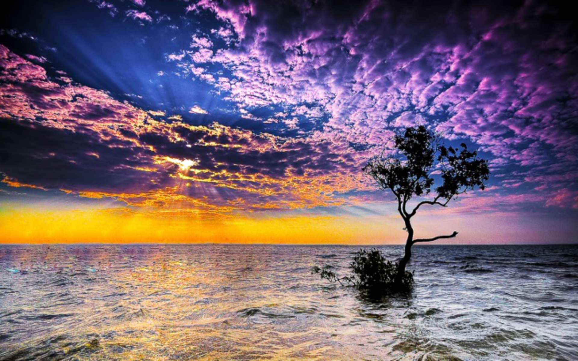 DOWNLOAD: magnificent sunset on sea free background 2560 x 1600