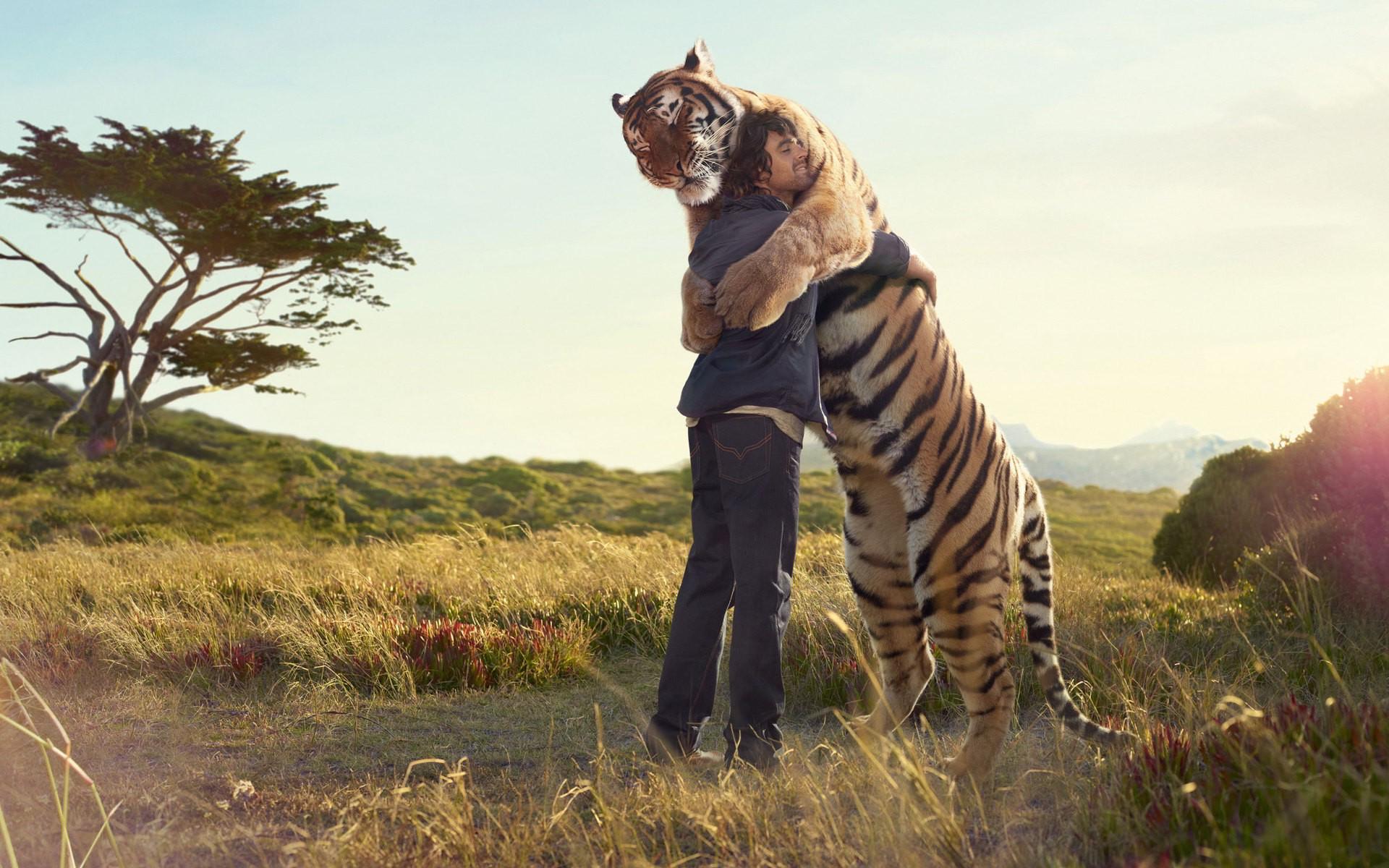 Man tiger hug