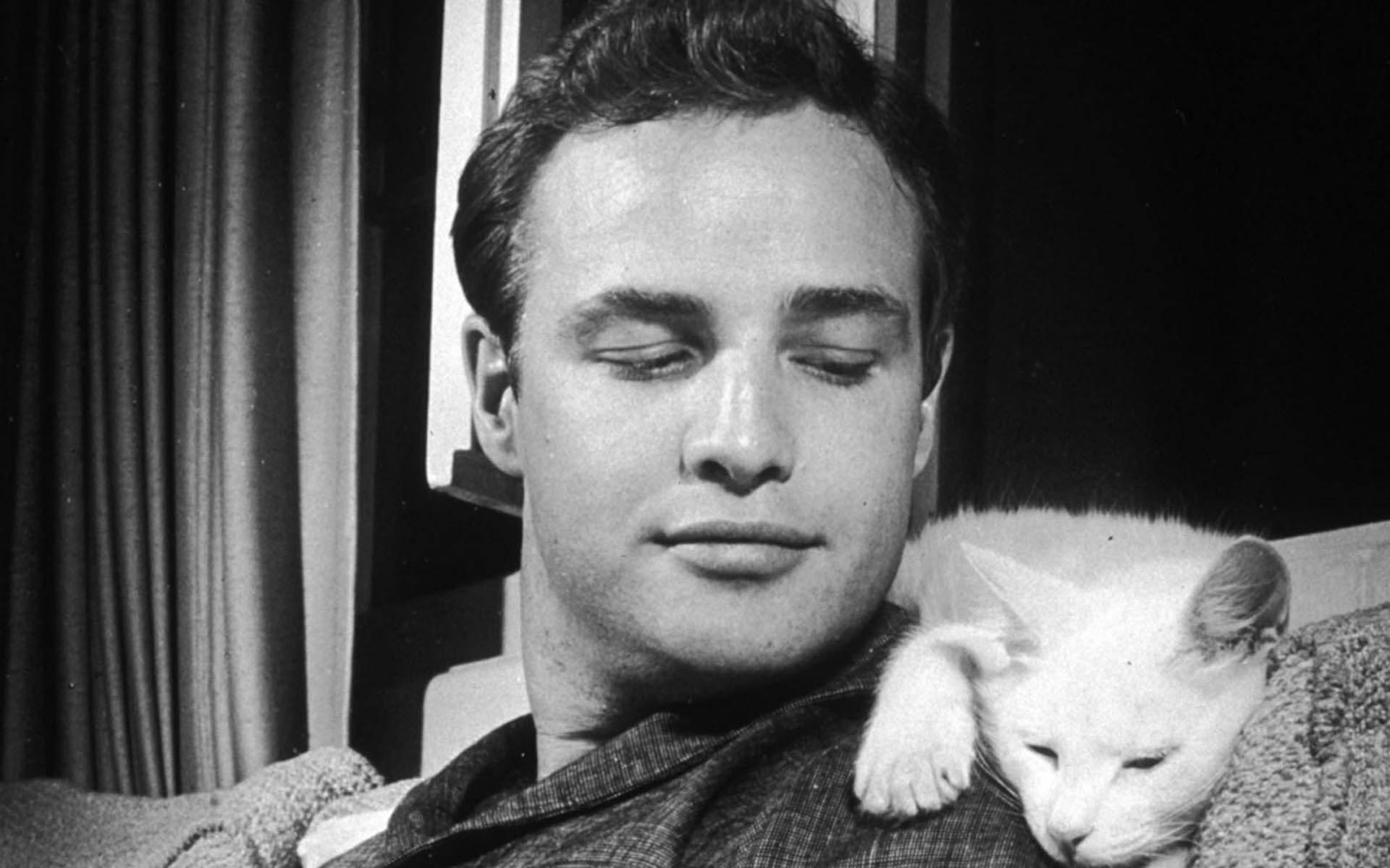 ... Marlon Brando Wallpapers ...