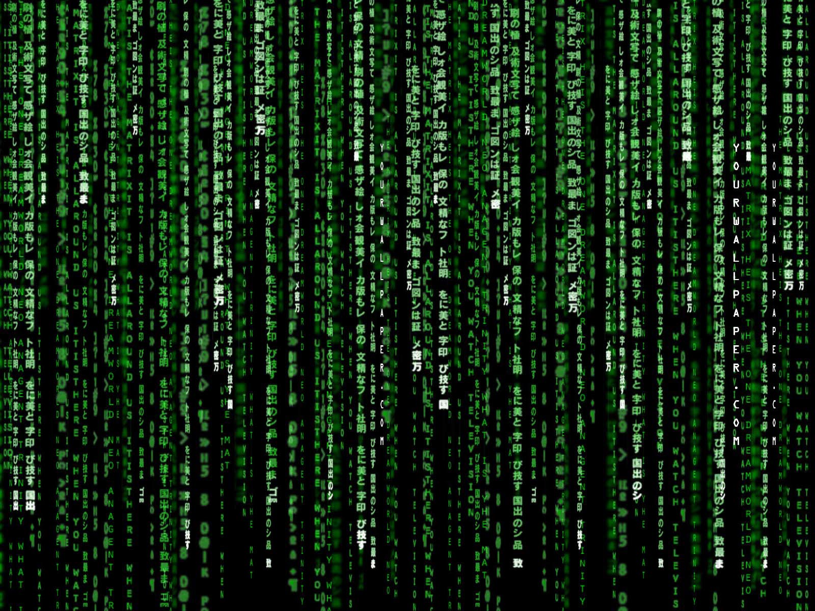 HD Wallpaper | Background ID:27094. 1600x1200 Movie The Matrix