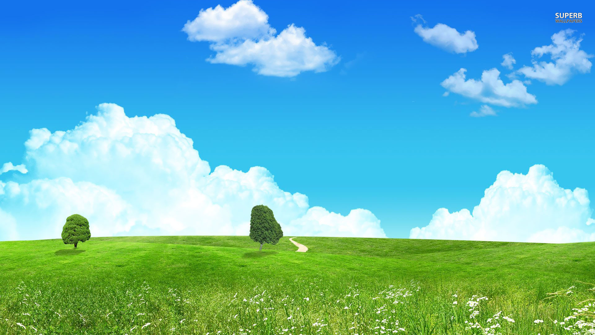 Meadow Wallpaper
