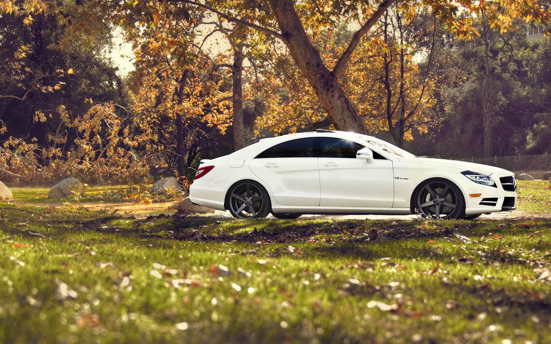 Mercedes-Benz CLS Road