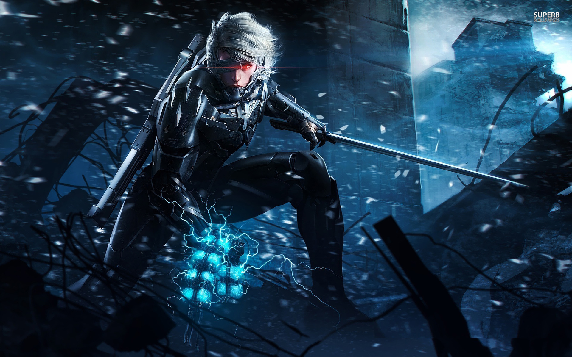 Raiden Metal Gear Rising Revengeance