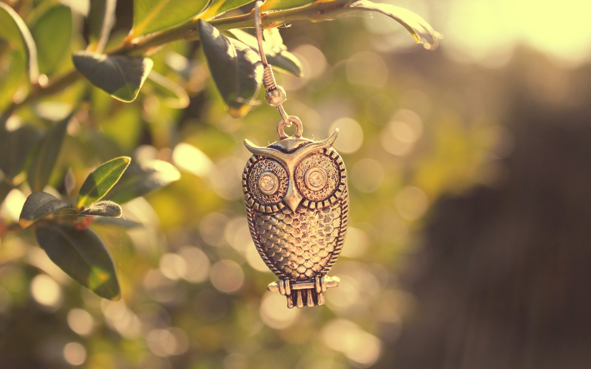 Metal Owl Bird Branch Leaves Macro Photo