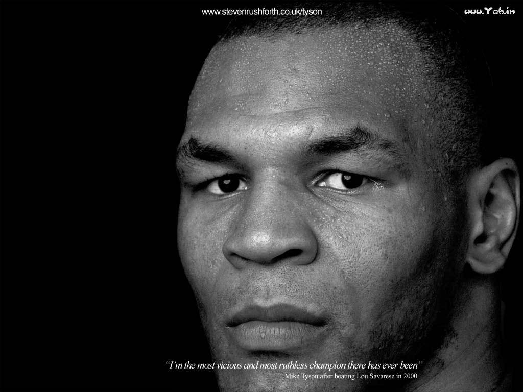 mike tyson face wallpaper – 1024 x 768 pixels – 75 kB
