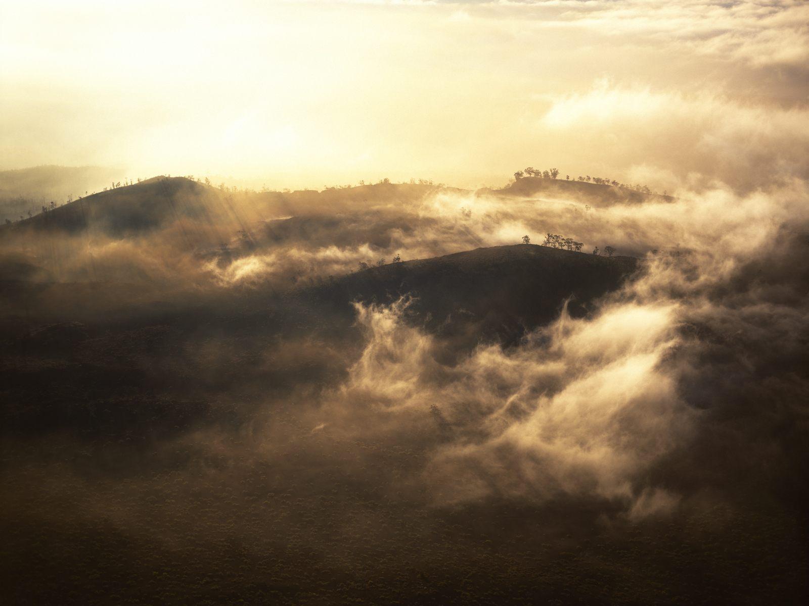 Landscape : Mist