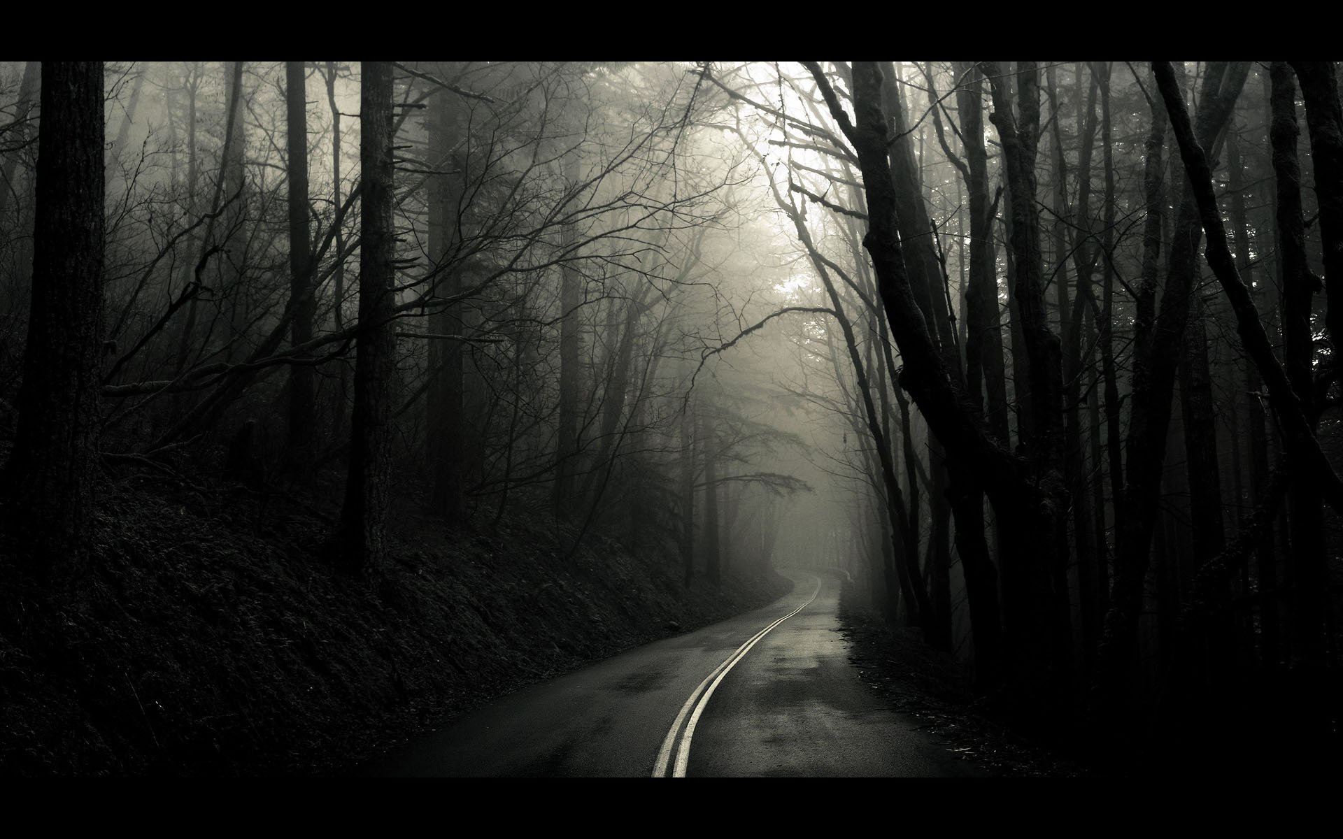 Into The Mist Wallpaper Wallpapers 70