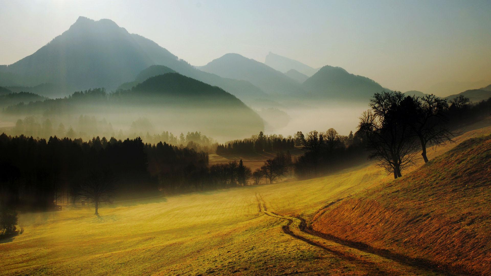 Misty Morning Wallpaper 16284