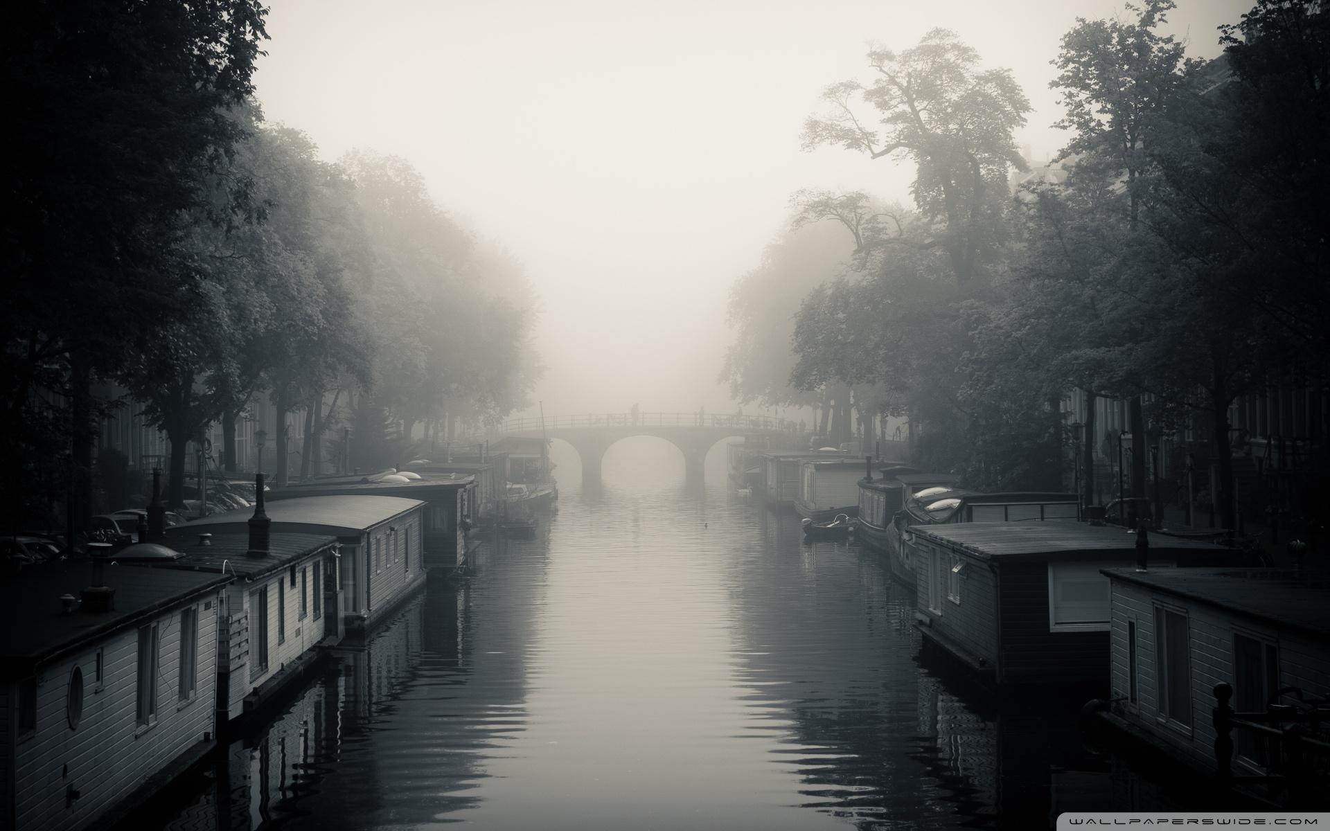 Misty Wallpaper 16282