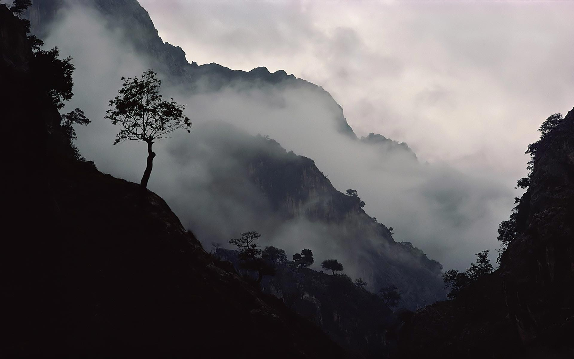 Misty Wallpaper HD