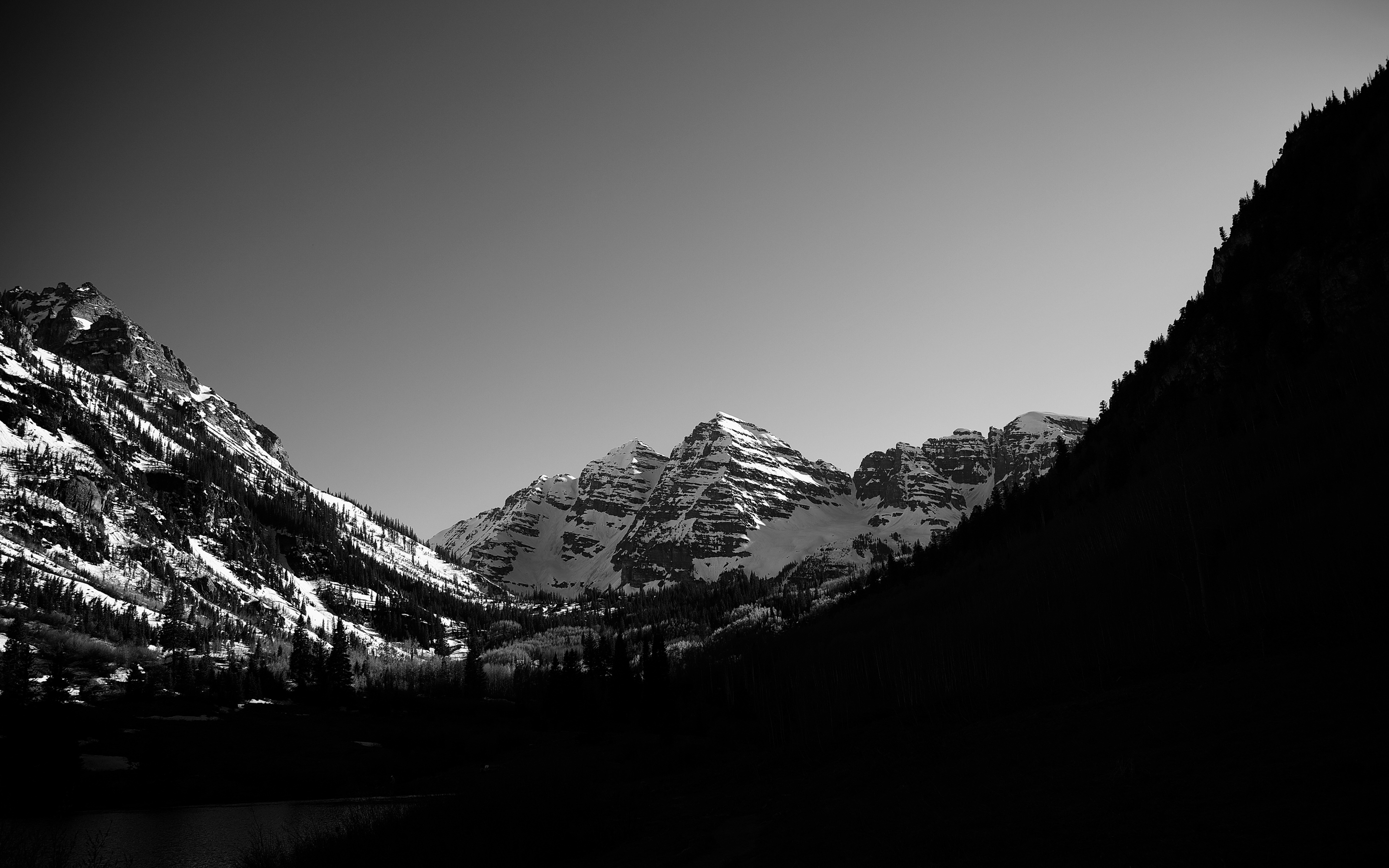 Monochrome forest mountains scenery