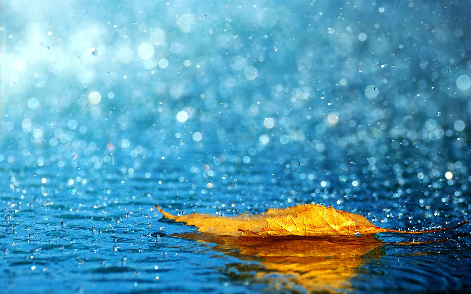 Monsoon Wallpaper