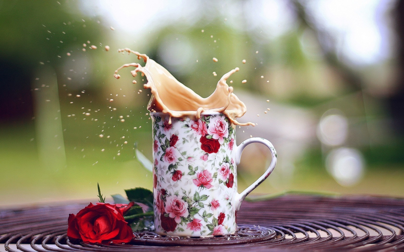 Mood Cup Mug Spray Splash Roses Flowers
