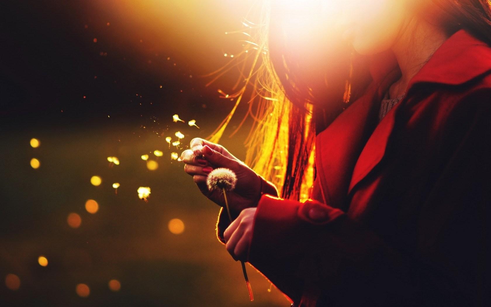 Mood Girl Dandelion Seeds Flower Sun