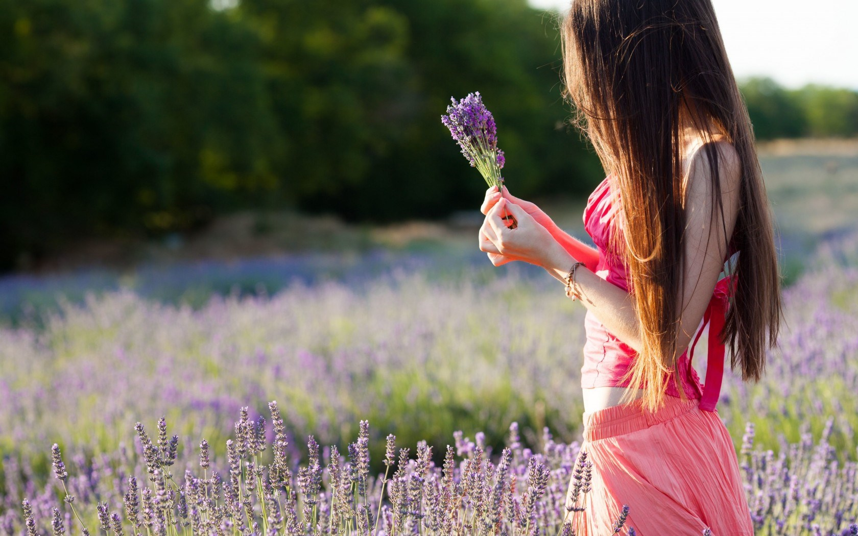 Mood Girl Field Flowers Purple Nature