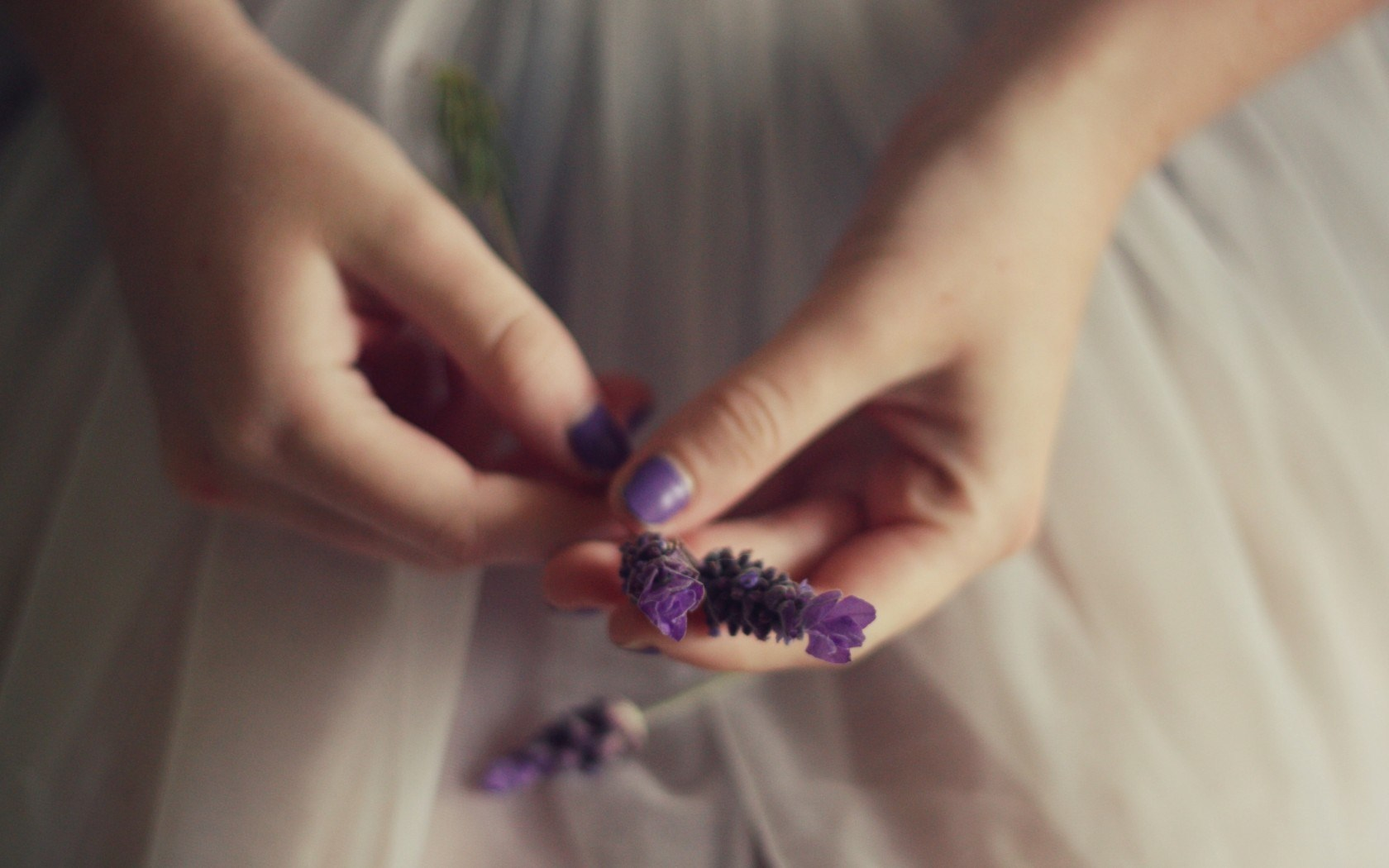 Mood Girl Lavender Flowers