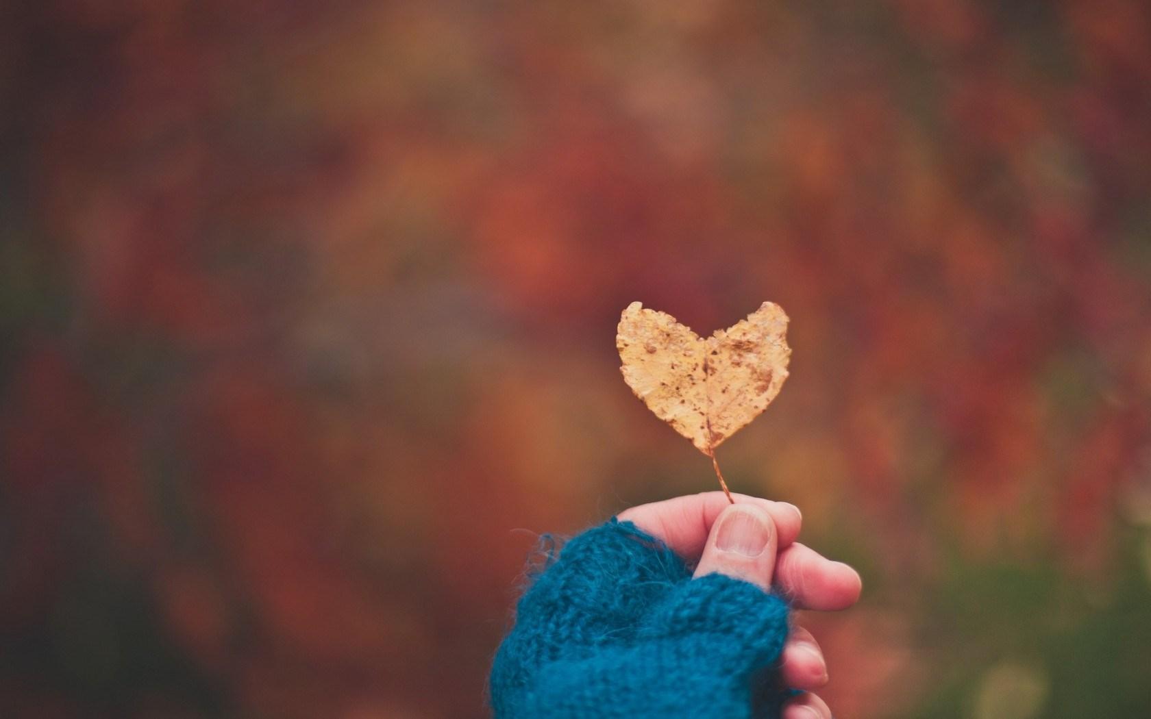 Mood Leaf Heart Hand Girl Love