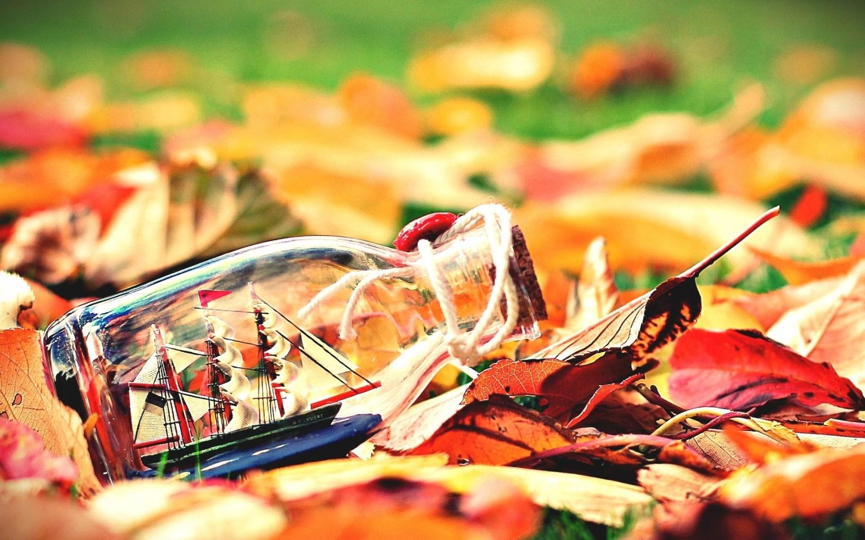 Mood Leaves Bottle Boat Ship Sail Autumn Nature