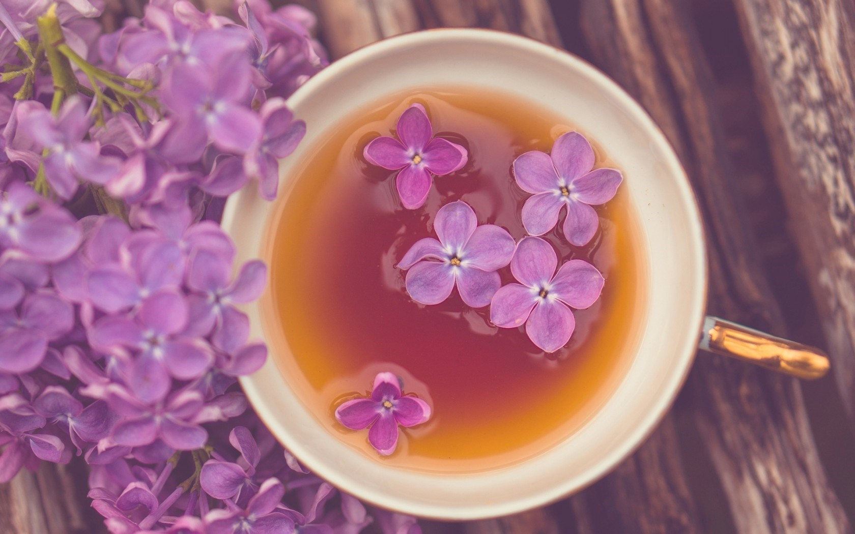 Mood Mug Cup Tea Flowers Purple Lilac