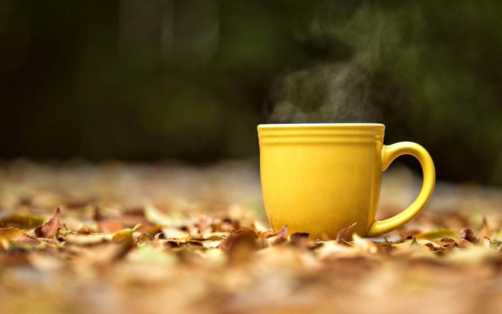 Mood Mug Cup Yellow Hot Tea Leaves Yellow Autumn