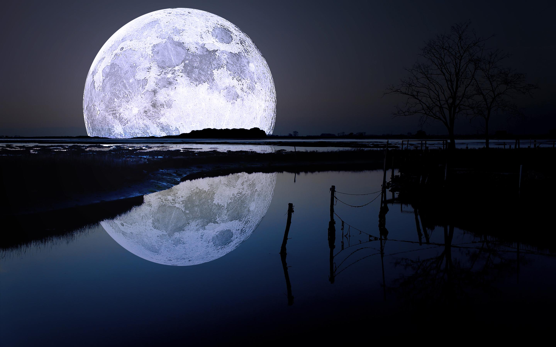 ... Meditation · full moon