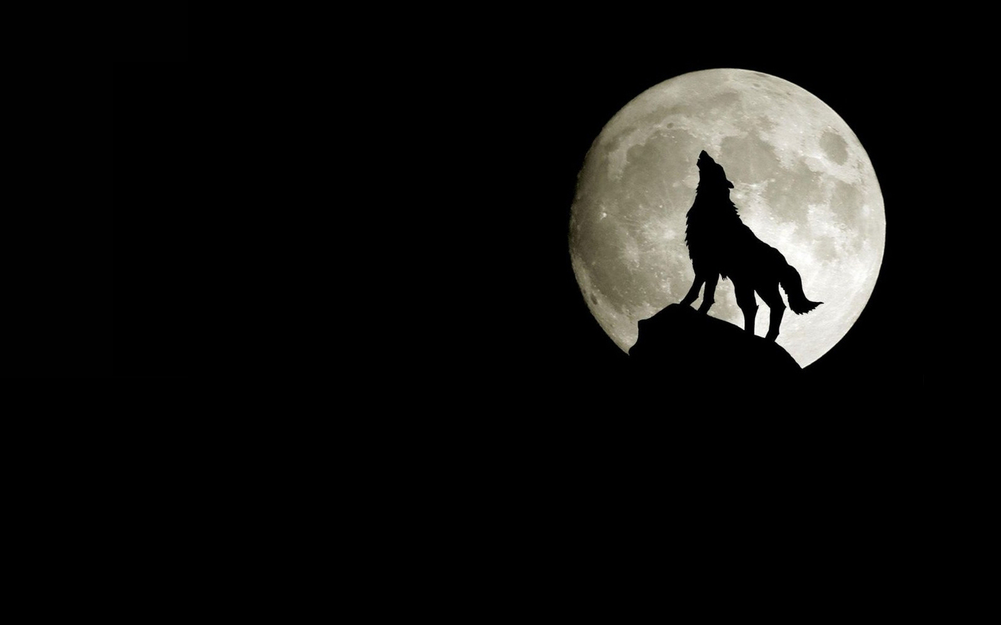 Moon Silhouette Wolves Wallpaper #219911 - Resolution 1440x900 px