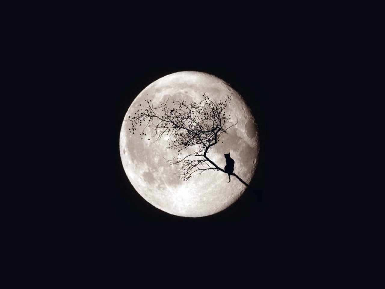HD Wallpaper | Background ID:108092. 1280x960 Earth Moon