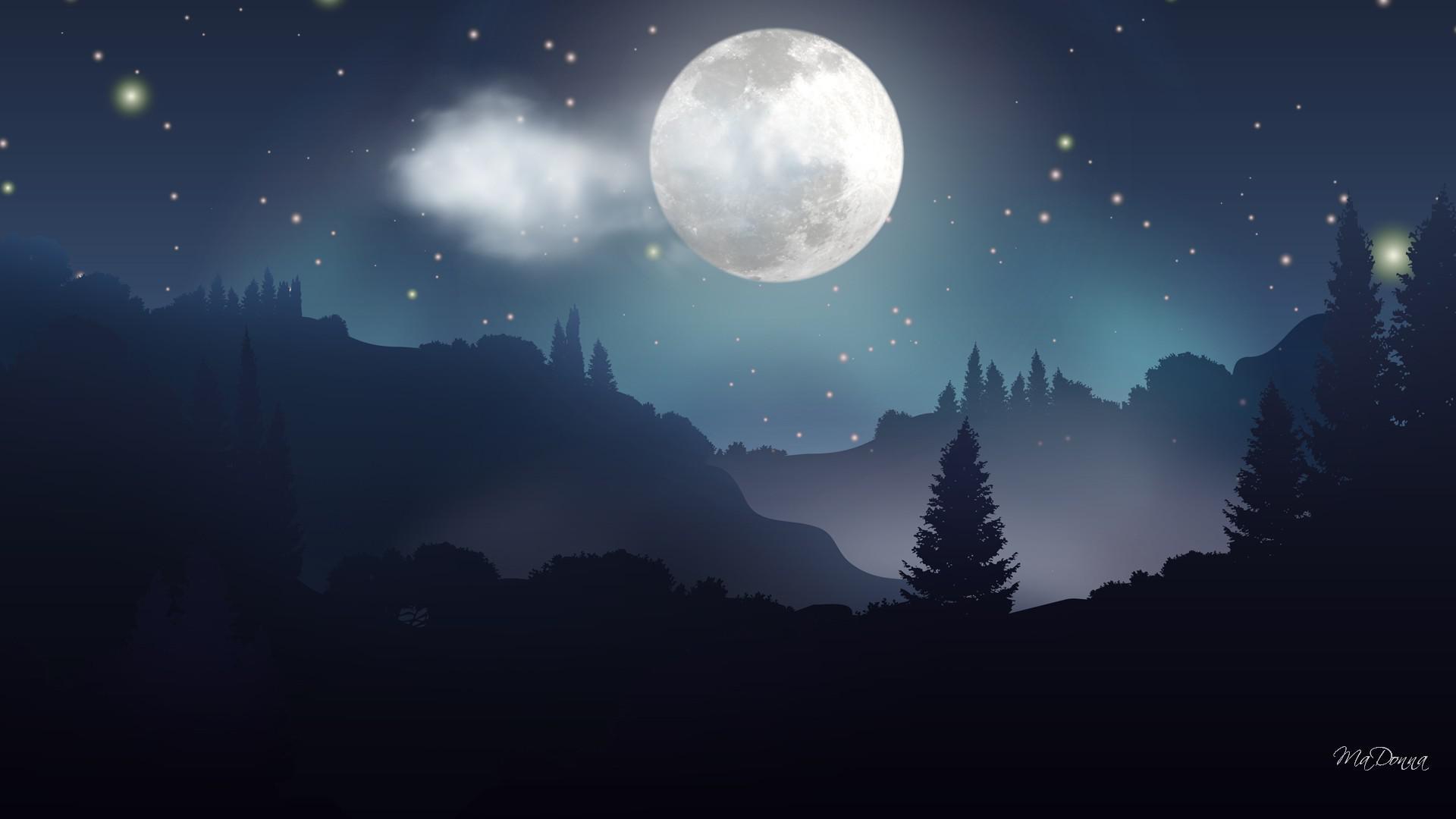 Moonlight forest night HQ WALLPAPER - (#153828)