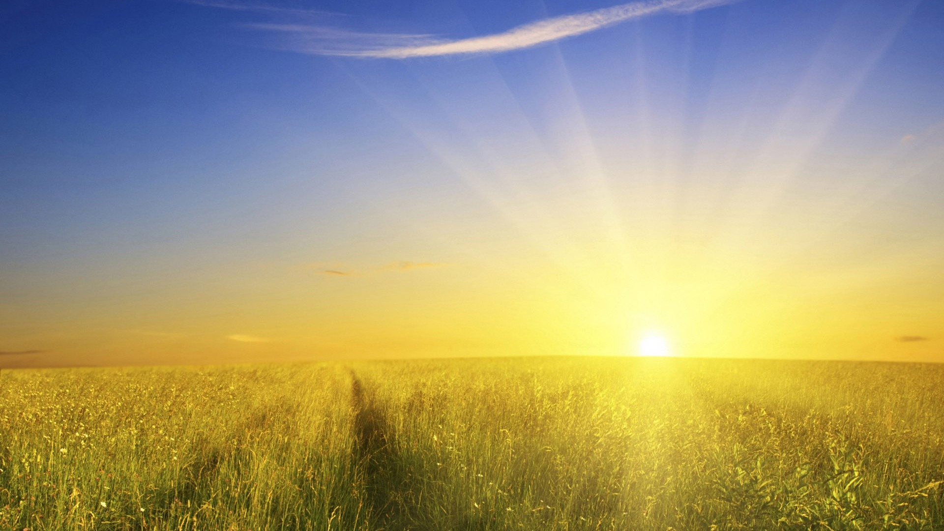 Morning Sunrise Wallpaper Images 6 HD Wallpapers