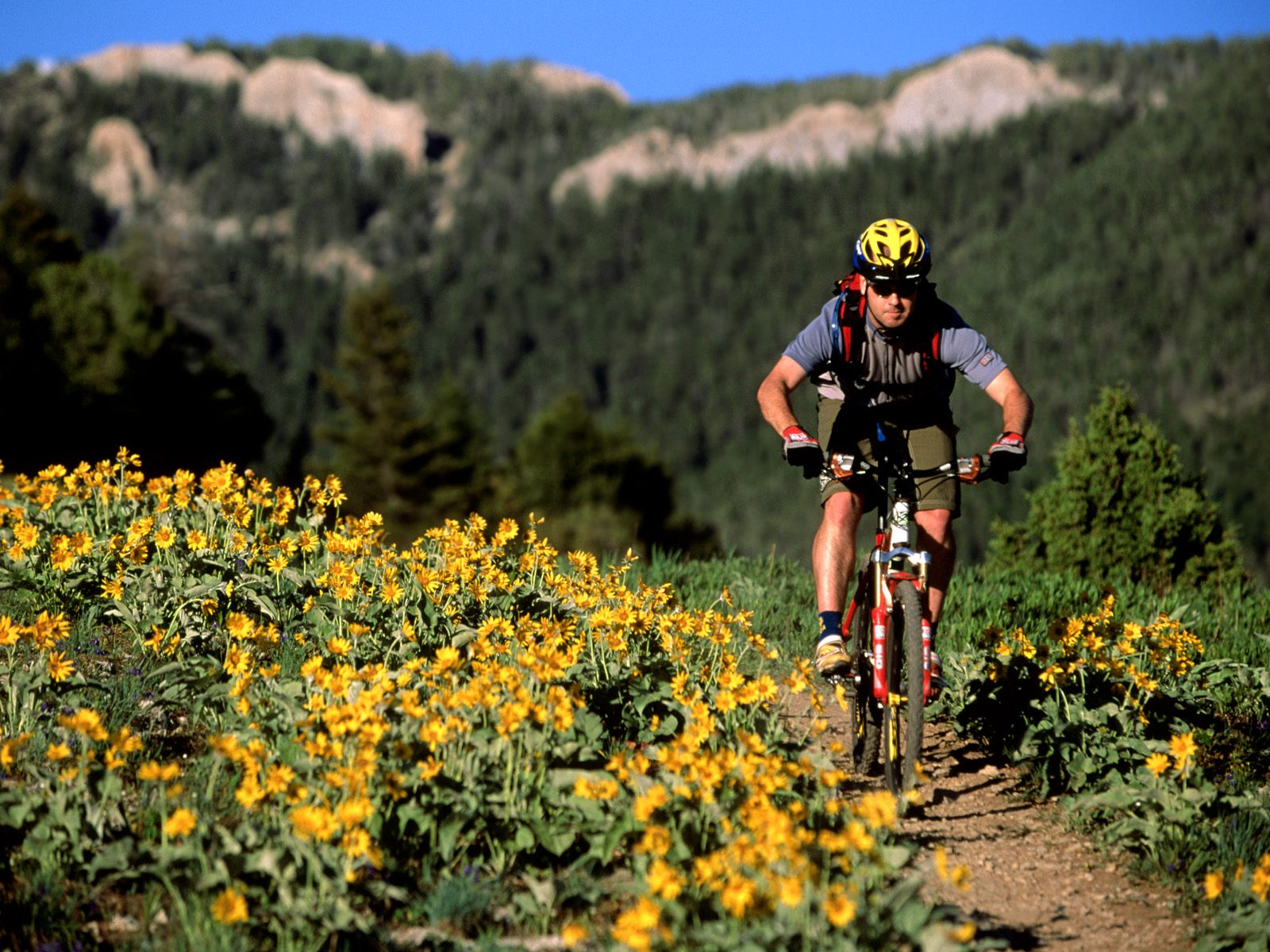 Mountain Biking Sypes Canyon Bozeman Montana
