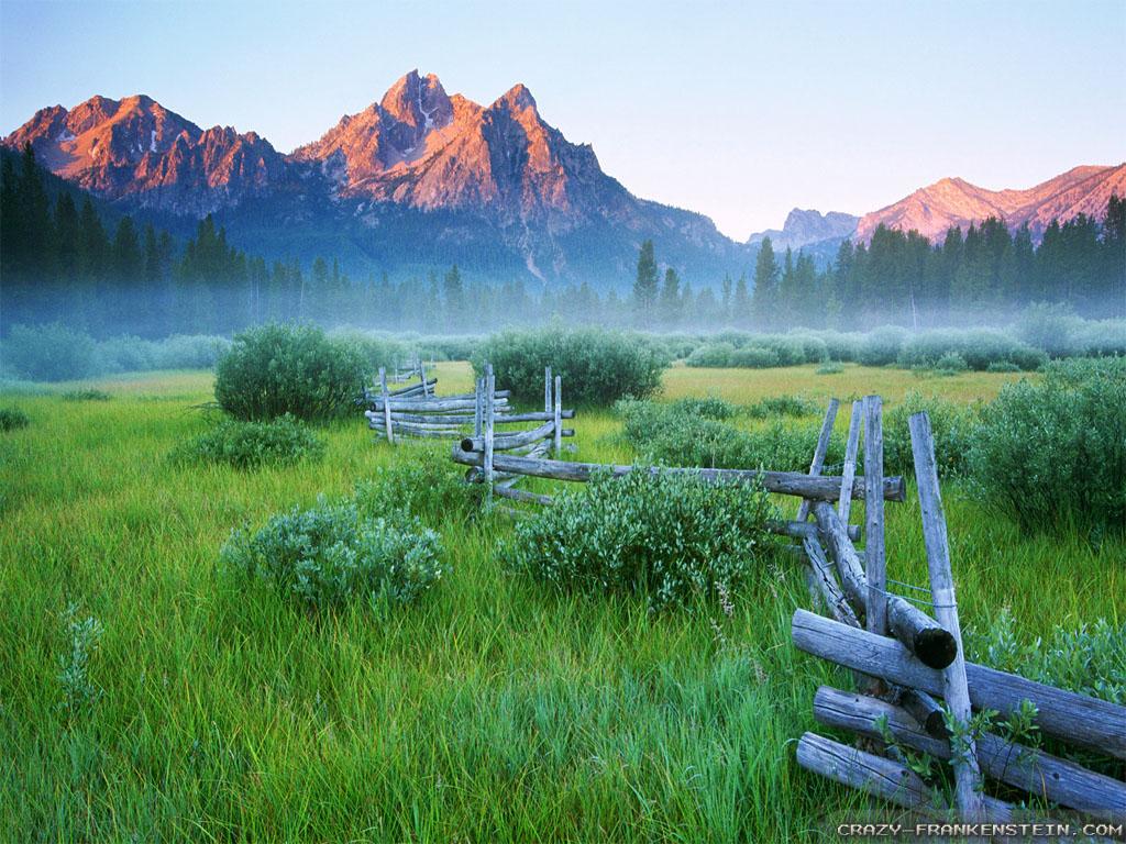 Wallpaper: Rail Fence Spring Mountain Meadow