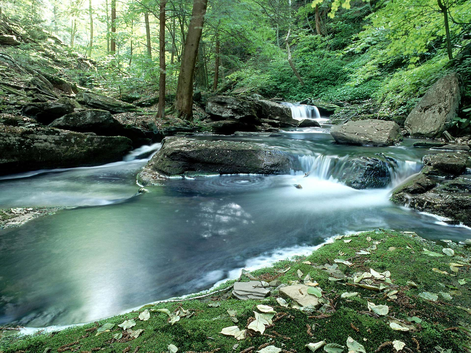 Mountain Stream Background