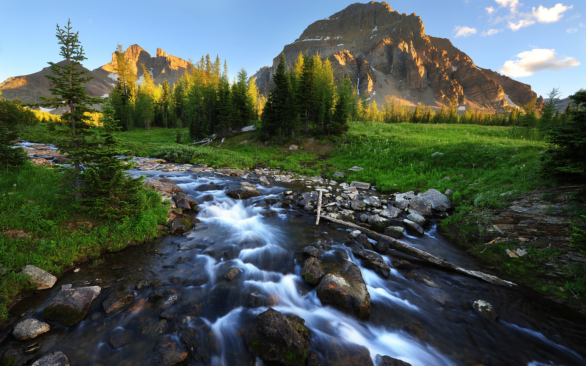 Mountain Stream HD