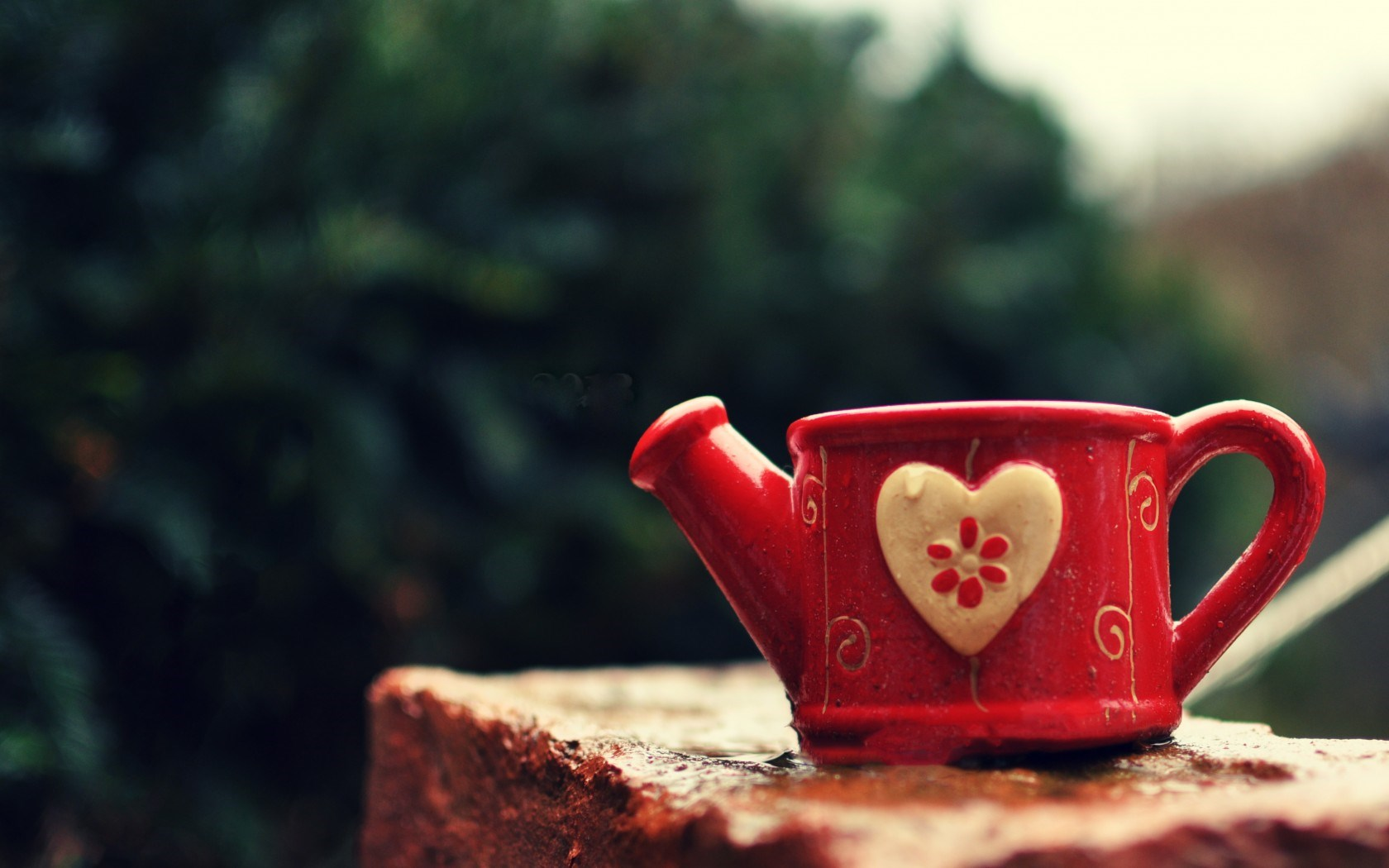 Mug Watering Can Cup Heart
