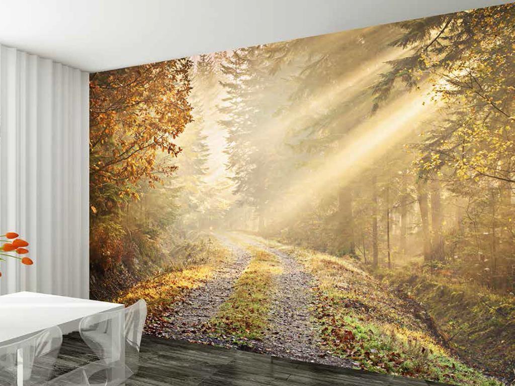 Forest Wallpaper Mural