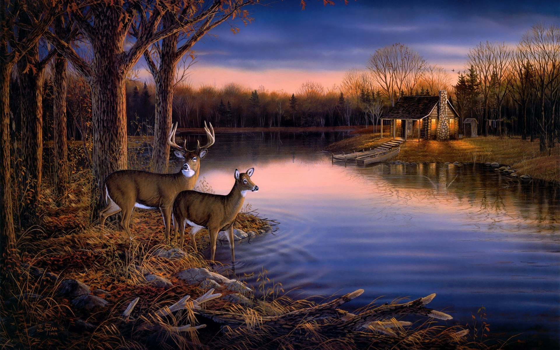 Awesome Wall Mural Wallpaper 1