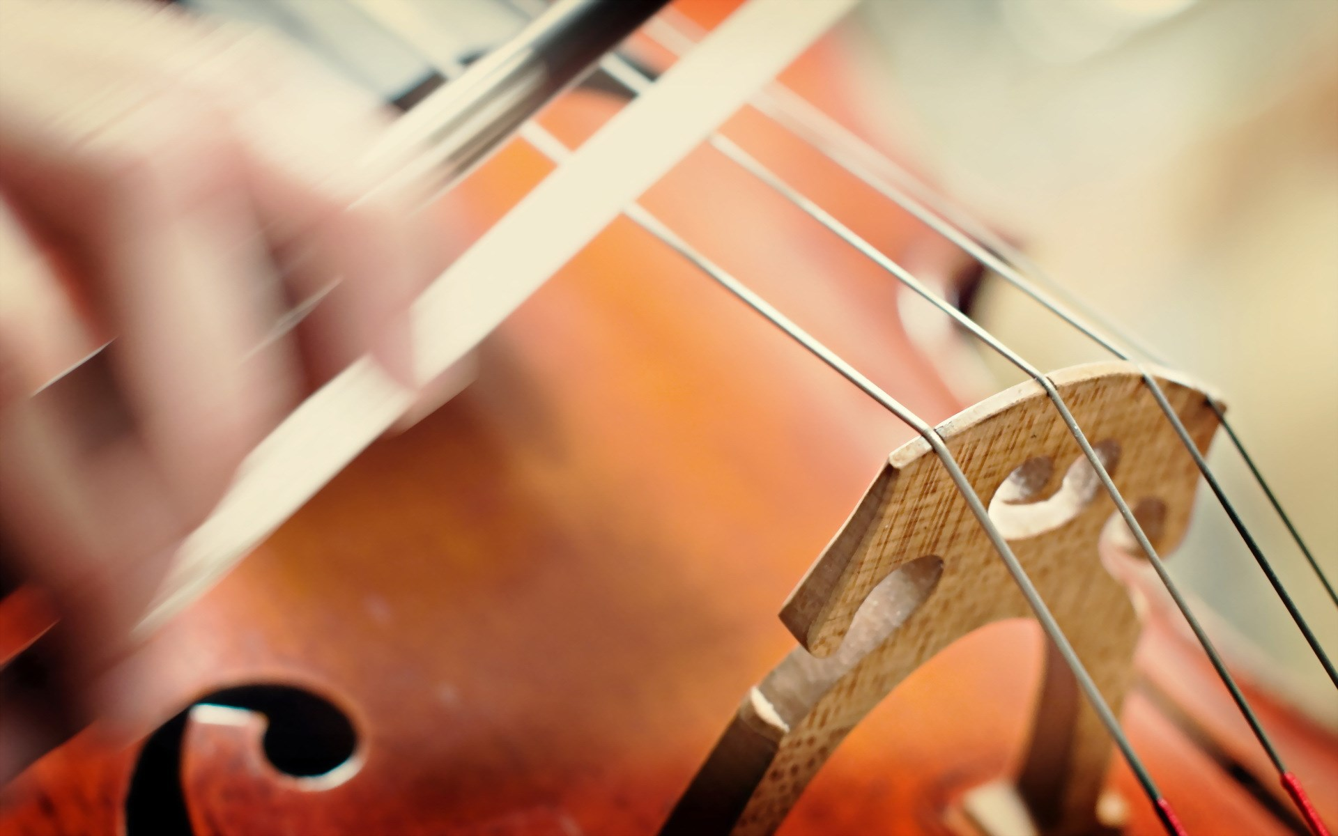 Music Violin Close-Up